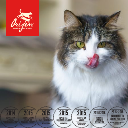 Orijen Cat Food Fit And Trim